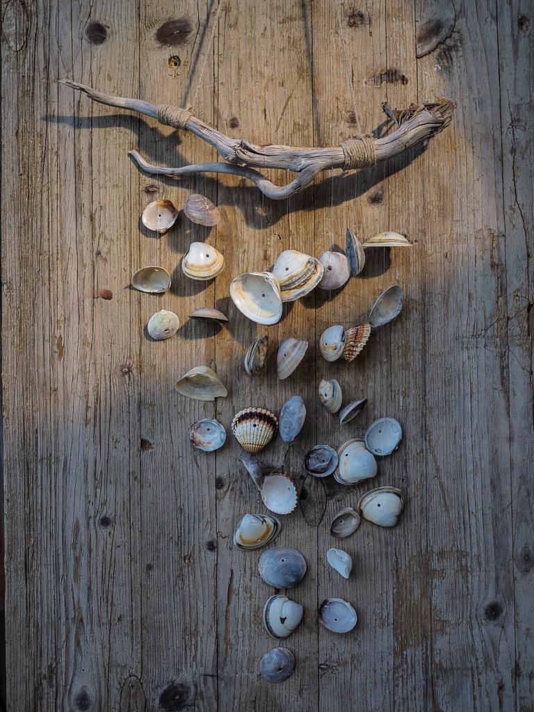 DIY | Mobile aus Muscheln selber basteln