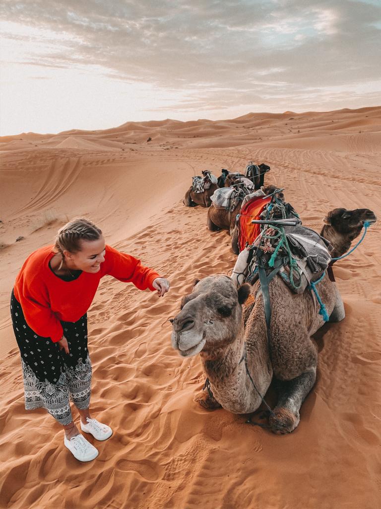 Traveldiary – Mädelstrip nach Marokko, in die Wüste Merzouga, Teil 1